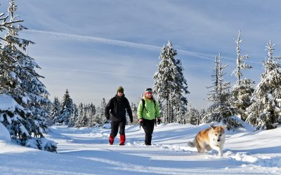7 Things You Need To Know About Winter Hiking